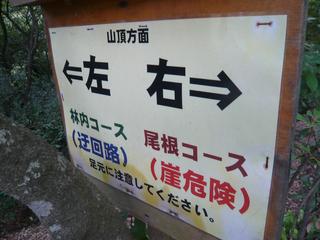 kinkazan7.jpg
